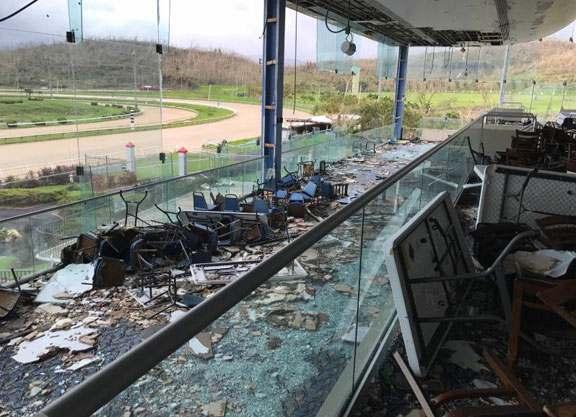 Por efectos del huracán María: DESASTROSA SITUACIÓN DE LA HÍPICA EN PUERTO RICO