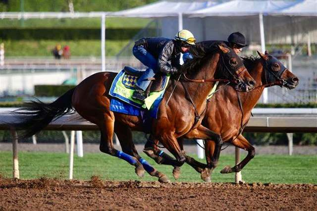 Los de Bob Baffert: WEST COAST Y COLLECTED AJUSTARON EL DOMINGO
