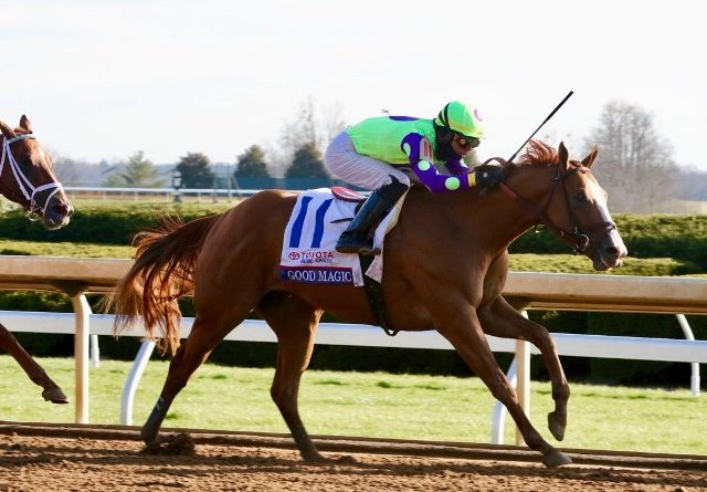 Ruta al Derby de las Rosas (G1): EL PEDIGREE DE GOOD MAGIC