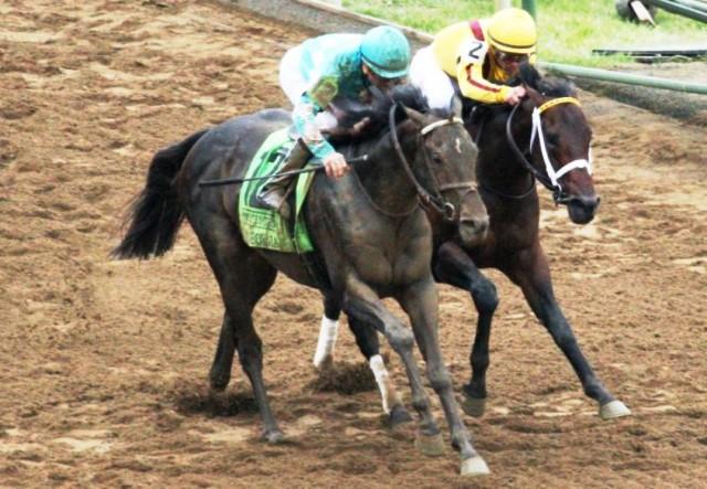 Ruta al Derby de las Rosas: MY BOY JACK ASEGURÓ SU CUPO EN EL LEXINGTON S. (G3)