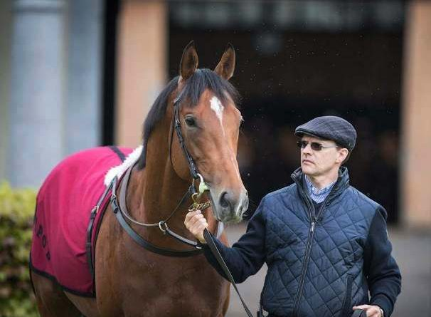 Líder entrenador en Royal Ascot: O'BRIEN RATIFICA A SAXON WARRIOR PARA EL IRISH DERBY (G1)