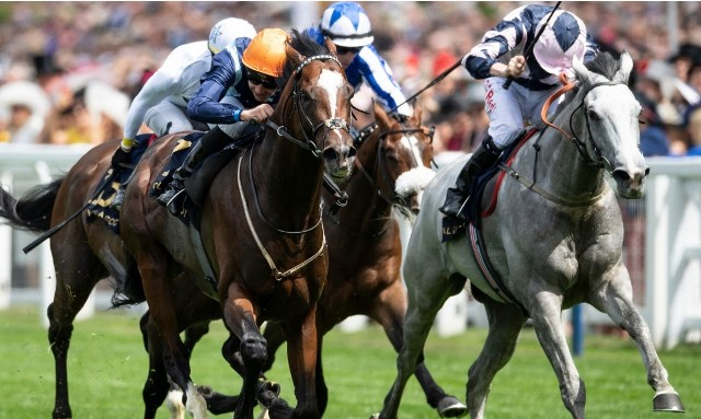La Sorpresa abrió Royal Ascot: ACCIDENTAL AGENT SOBRESALIÓ EN EL QUEEN ANNE S. (G1)
