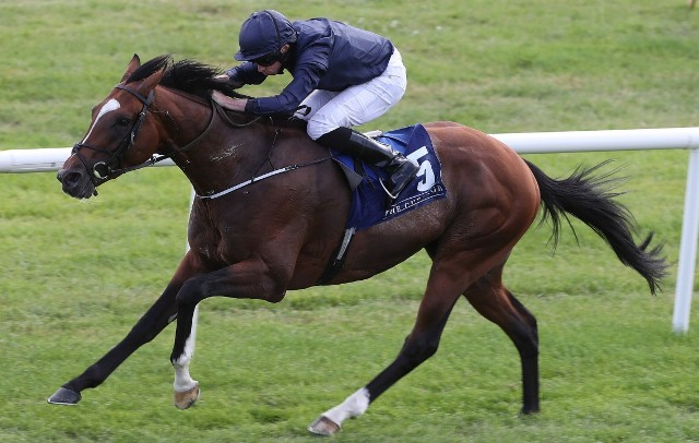 Mostrando poderío: FLAG OF HONOUR FUE SUPERIOR EN EL IRISH ST. LEGER S. (G1)