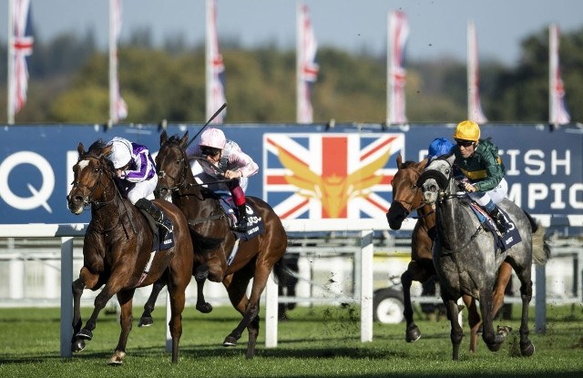 Rumbo a las Breeders': MAGICAL RESOLVIÓ CONVINCENTE EN EL BRITISH CHAMPIONS FILLIES & MARES S. (G1)