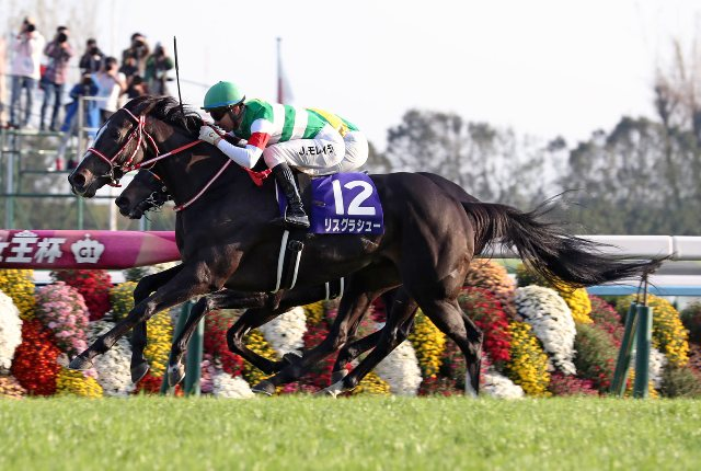 Atropellada espectacular: LYS GRACIEUX ALCANZÓ A CROCOSMIA EN THE QUEEN ELIZABETH II CUP (G1)