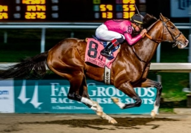 RUMBO AL KENTUCKY DERBY (G1): War of Will respondió al favoritismo en el LeComte S. (G3)