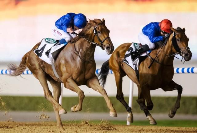 DUBAI: La linajuda DIVINE IMAGE voló al final para alcanzar la victoria en las UAE Oaks (G3)