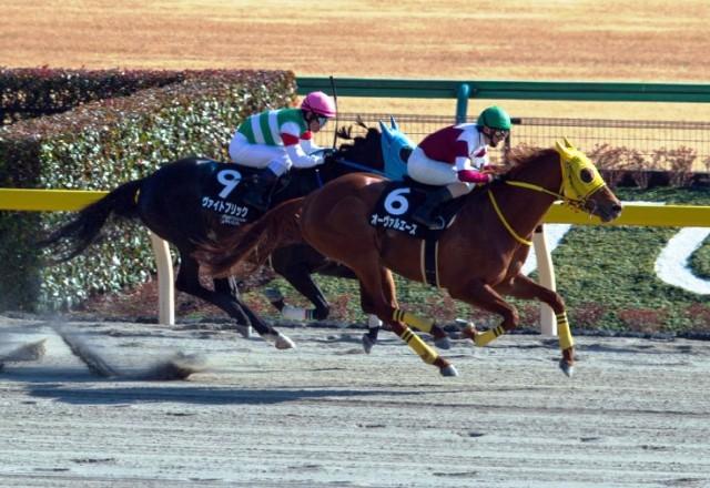 RUTA AL KENTUCKY DERBY (G1): En Japón, el invicto OVAL ACE venció en el Hyacinth S. (Listado) y sumó 30 puntos.