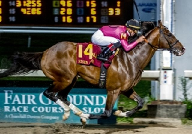 RUTA AL KENTUCKY DERBY (G1): No hubo escollos para WAR OF WILL en el Risen Star S. (G2)