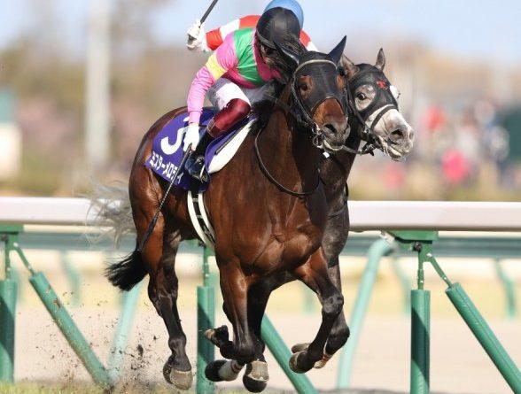 JAPÓN: Un Scat Daddy en Japón, MR MELODY triunfó en el Takamatsunomiya Kinen (G1)