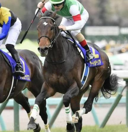 JAPÓN: El invicto SATURNALIA dio el primer paso hacia la Triple Corona venciendo en el 79º Satsuki Sho (G1)