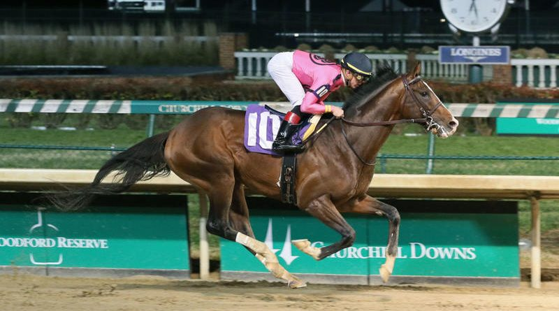 RUTA AL KENTUCKY DERBY (G1): El castaño WAR OF WILL sigue en carrera y muestra óptimo estado