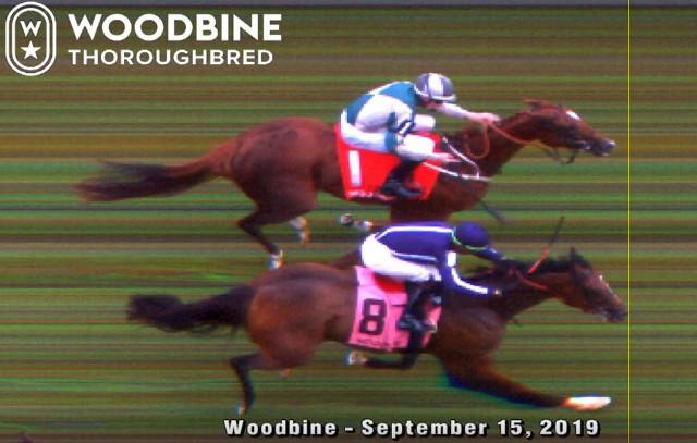 WOODBINE (Canadá): ABSCOND triunfó en un peleadísimo Natalma S. (G1)
