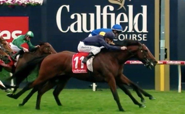 CAULFIELD (Australia): CAPE OF GOOD HOPE debutó en Australia triunfando en el Caulfield S. (G1)
