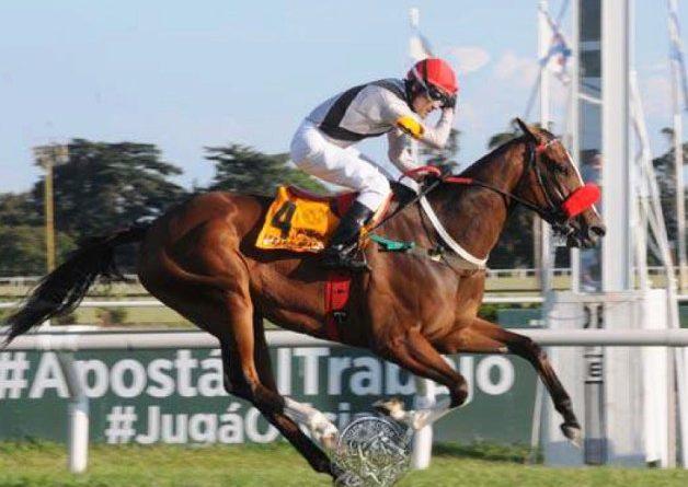 SAN ISIDRO (Argentina): SEAS ALABADA se consagró como la mejor yegua del año triunfando en el Gran Premio Copa de Plata (G1)