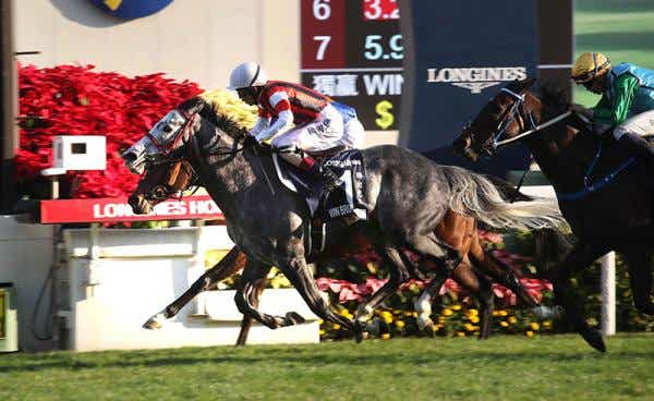 SHA TIN (Hong Kong): En final dramático, WIN BRIGHT dominó en la Hong Kong Cup (G1)