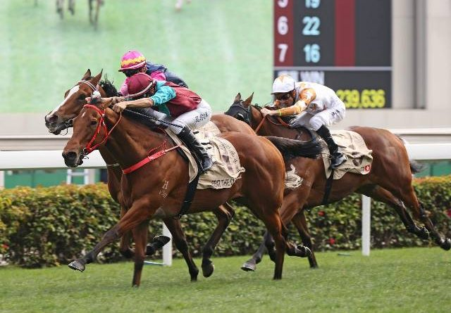 SHA TIN (Hong Kong): El Campeón BEAT THE CLOCK repitió en la Centenary Sprint Cup (G1)