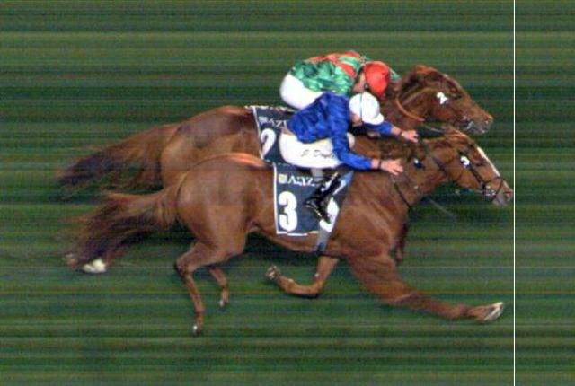 MEYDAN (Dubai): ¡En final de foto! MAGIC LILY obtuvo su 1ª victoria clásica en el Cape Verdi S. (G3)