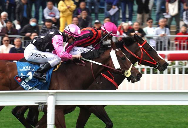 SHA TIN (Hong Kong): WAIKUKU le dio caza a BEAUTIFUL GENERATION en la Stewards' Cup (G1)