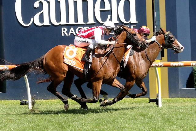 CAULFIELD (Australia): STREETS OF AVALON sorprendió a los favoritos en el Futurity S. (G1)