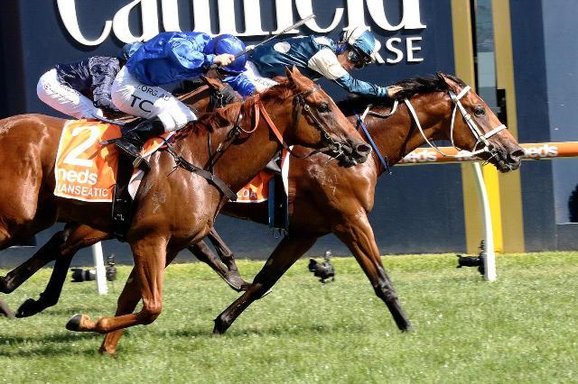 CAULFIELD (Australia): El potro TAGALOA se encumbró en la 50ª versión del millonario Blue Diamond S. (G1)