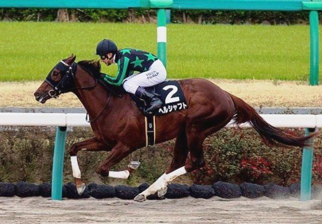 NAKAYAMA (Japón): El estadounidense HERRSCHAFT sorprendió en el Fukuryu S. y se clasificó al Kentucky Derby (G1) en representación de Japón
