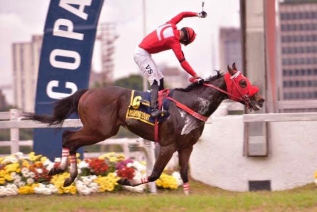 CIDADE JARDIM (Brasil): DASHING COURT se confirmó como el mejor 2 años de Brasil galopando el Grande Premio Joao Adhemar de Almeida Prado (G1)