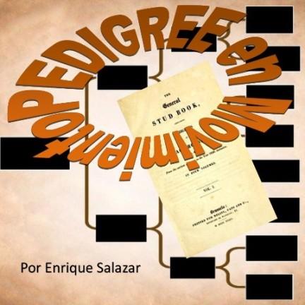 PREMIOS ECLIPSE 2020 – El Pedigree de los Campeones: ESSENTIAL QUALITY