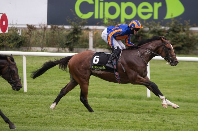 LEOPARDSTOWN (Irlanda): ¡Con atropellada fulminante! ROYAL DORNOCH resolvió el Desmond S. (G3)