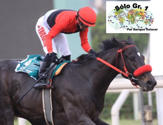 MONTERRICO (Perú): ¡Suma 2 Coronas! NUREMBERG se ratificó como el mejor en el Clásico Ricardo Ortiz de Zevallos (G1) e irá por la Triple Corona.