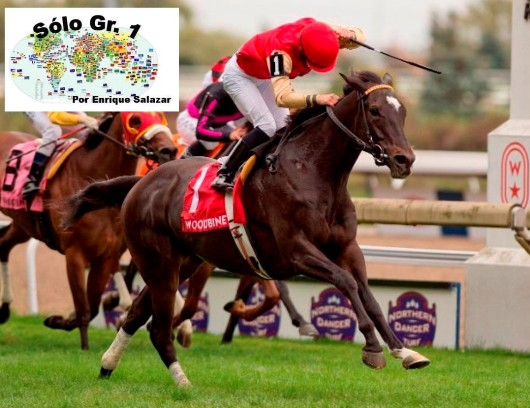 "WOODBINE (Canadá): SAY THE WORD sacó la ""Clase"" en el NORTHERN DANCER TURF S. (G1)"