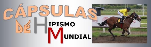 HIPÓDROMO PRESIDENTE REMÓN (Panamá): ¡Al galope de nuevo! La potra VICKYS ANGEL se reafirmó como la líder generacional triunfando en el CLÁSICO ALBERTO DE OBARRIO Y ARCHIBALD DE OBARRIO BOYD (Pan-G3)