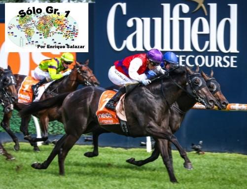 CAULFIELD (Australia): ¡Atropellada contundente! El potro ARTORIUS se llevó los honores en el BLUE DIAMOND S. (G1)