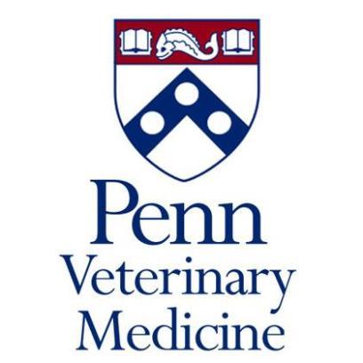 TEMA DE DOMINGO: Veterinarios en Pensilvania (EUA) desarrollaron una nueva prueba de detección del dopaje genético en Caballos