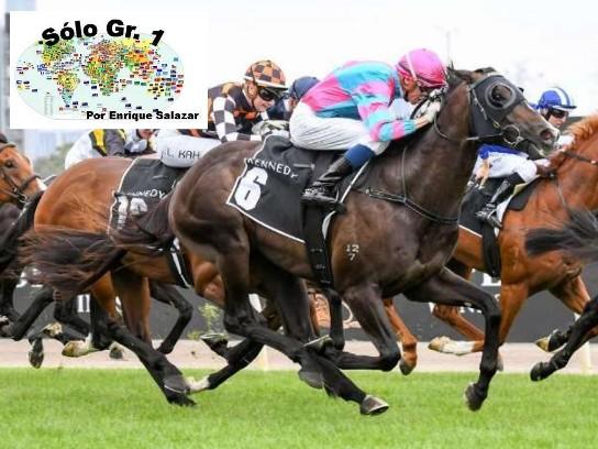 FLEMINGTON (Australia): ¡Sorpresa mayúscula! LUNAR FOX atropelló y venció en las AUSTRALIAN GUINEAS (G1) con dividendo de 300-1.